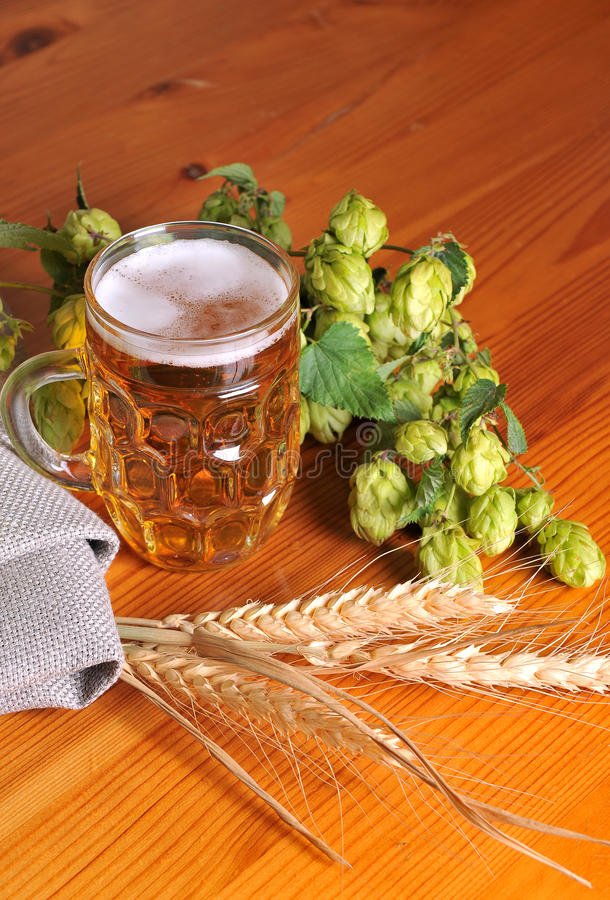 Free Beer And Hops Stock Photography - 19892392