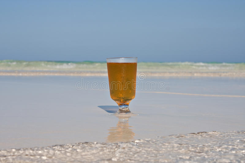 Beer On Beach stock images