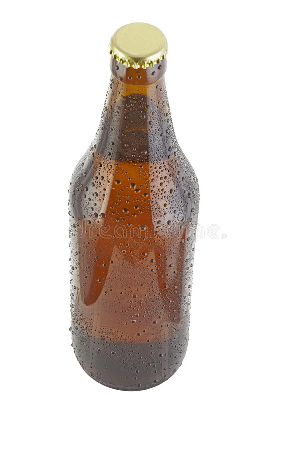 Free Beer Bottle Royalty Free Stock Photography - 19315317