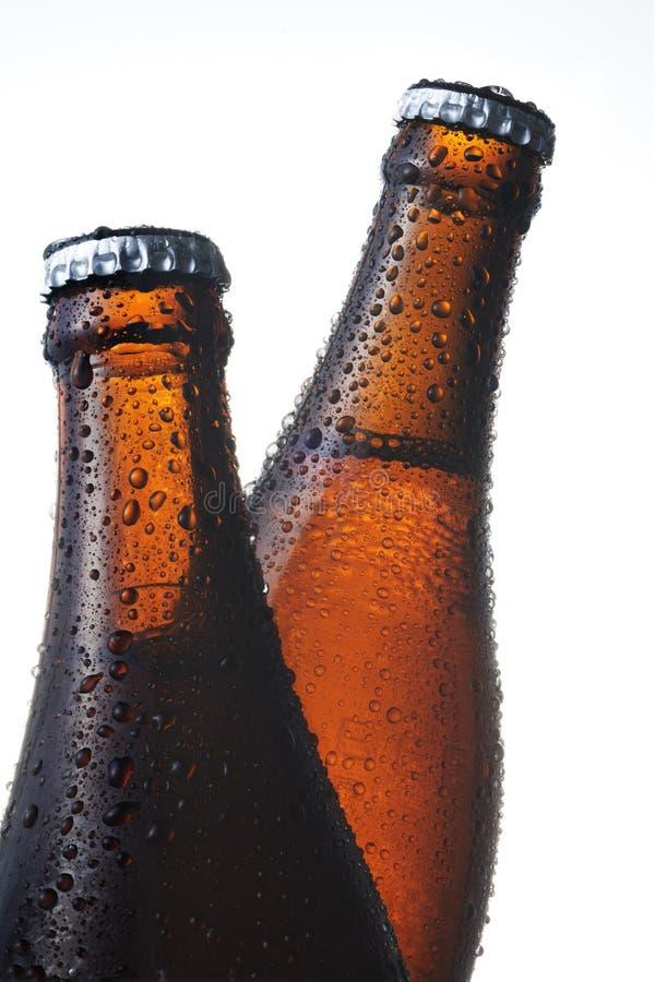 Download Beer bottle stock image. Image of bubble, liquid, life - 20454493
