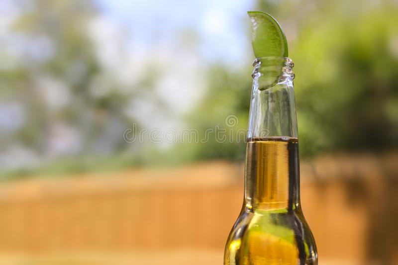 Beer bottle with a lime on top royalty free stock photo