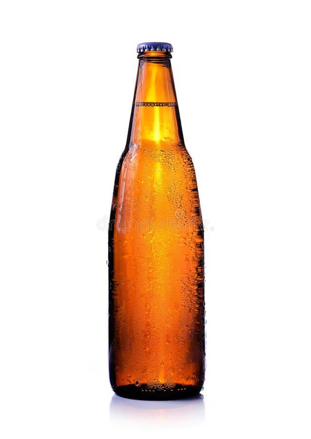 Beer bottle stock photo