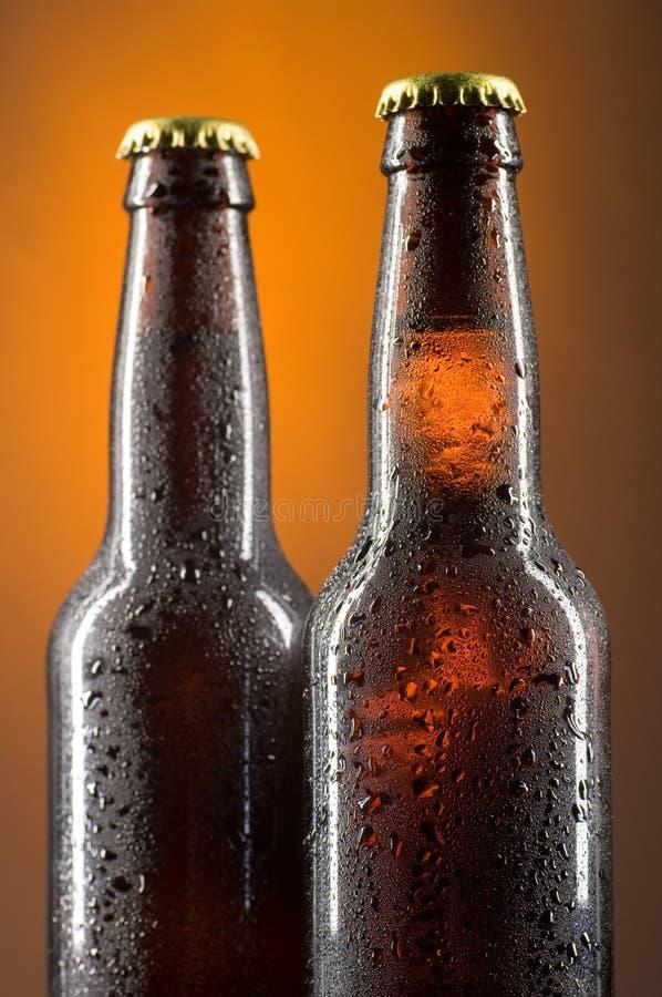 Download Beer bottles stock photo. Image of orange, amber, cold - 2850418