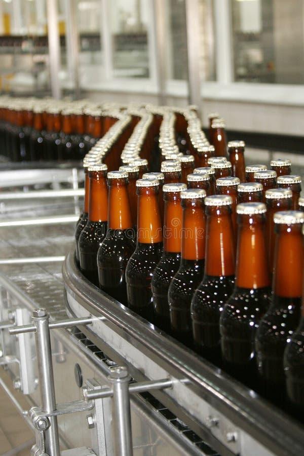 Beer_bottles photographie stock libre de droits