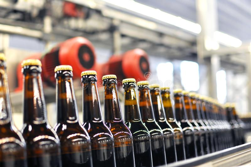 Beer bottles on the assembly line in a modern brewery - industrial plant in the food industry royalty free stock images