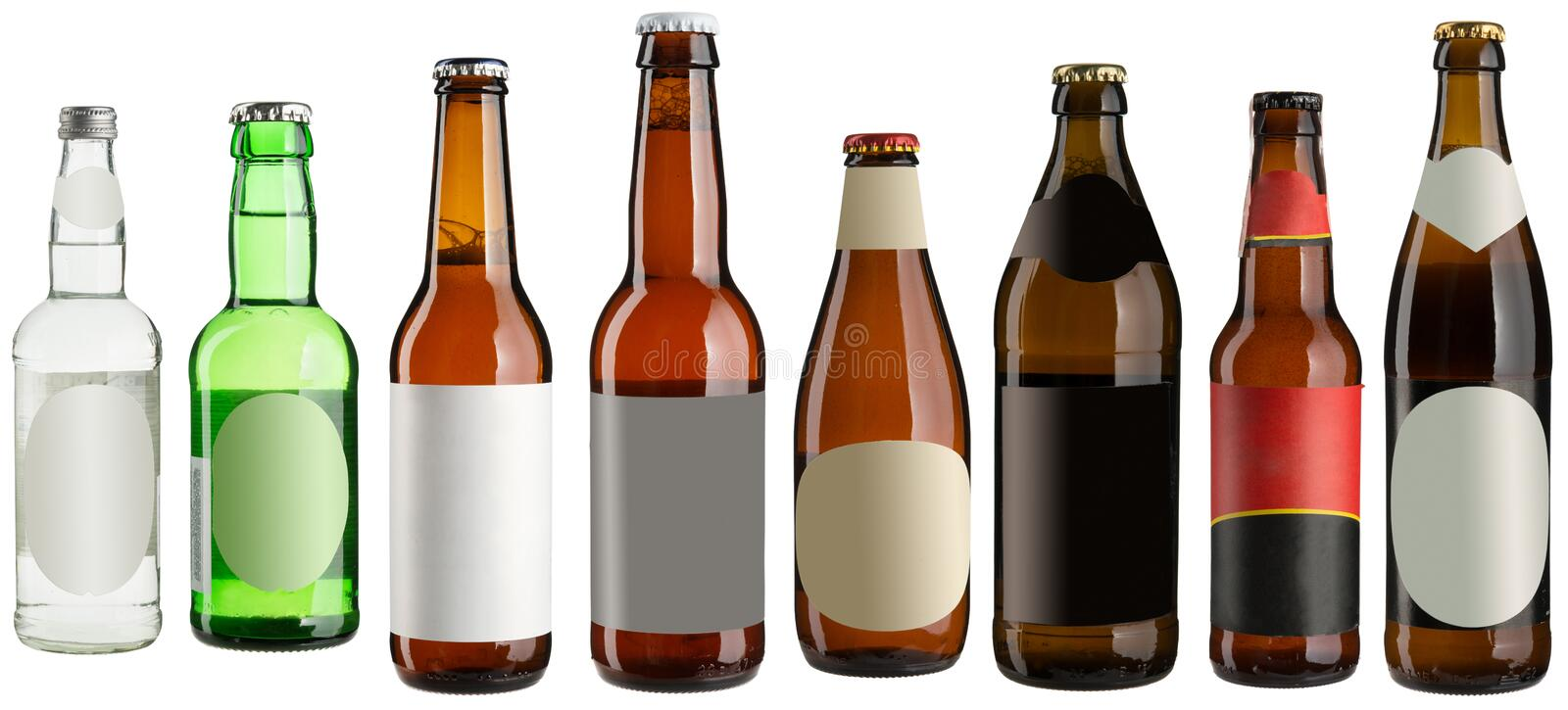 Beer bottles isolated on white stock photos