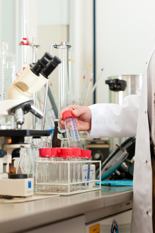 Beer Brewer in food laboratory examining. Brewer in the laboratory of his brewery and is doing analysis royalty free stock photo