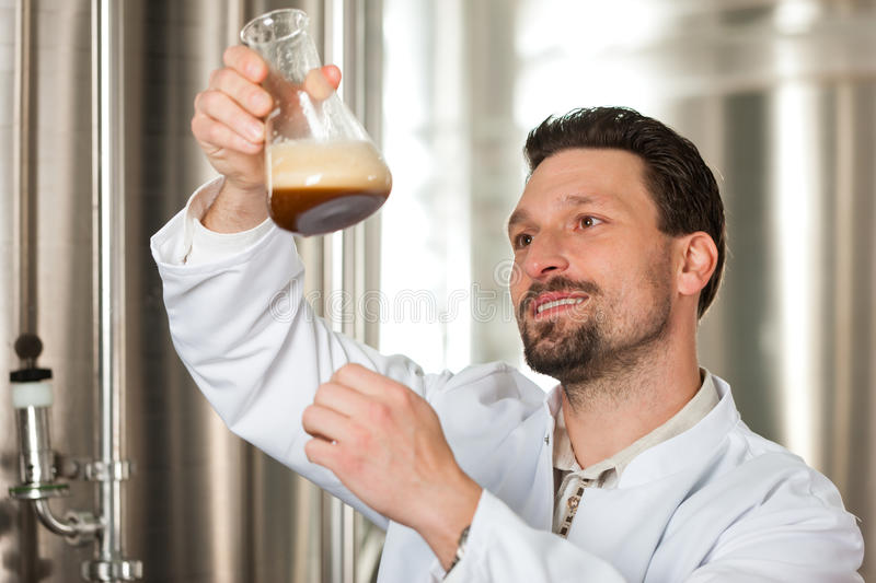 Beer brewer in his brewery examining. Brewer standing in his brewery and is examining the beer for its purity stock photos