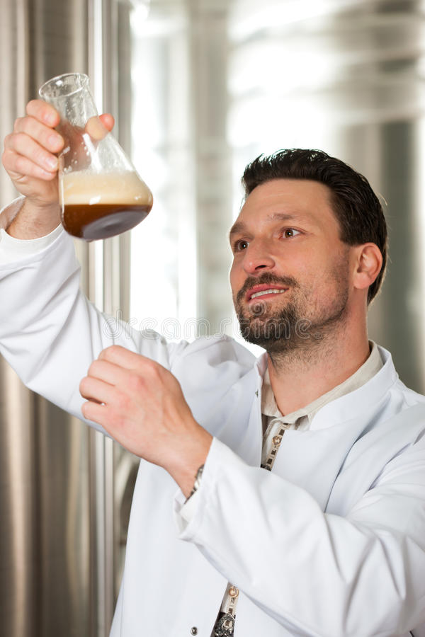 Beer brewer in his brewery examining. Brewer standing in his brewery and is examining the beer for its purity royalty free stock photography