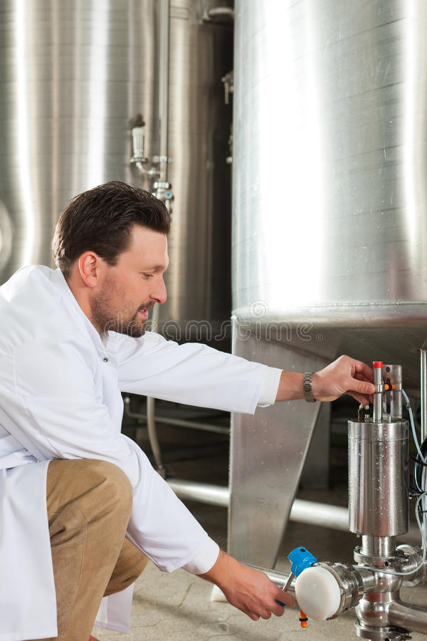 Beer brewer in his brewery. Brewer standing in his brewery and is examining the beer for its purity royalty free stock images