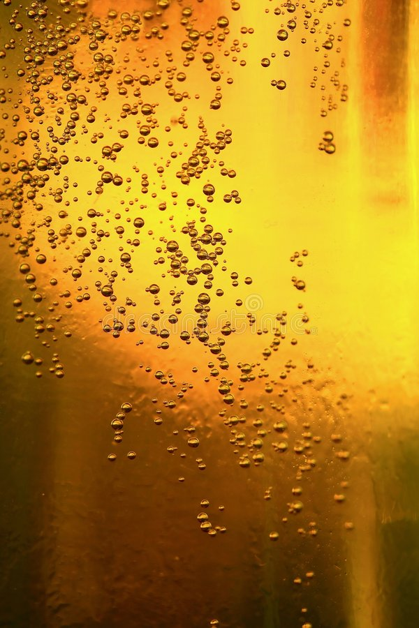 Beer bubbles royalty free stock photography