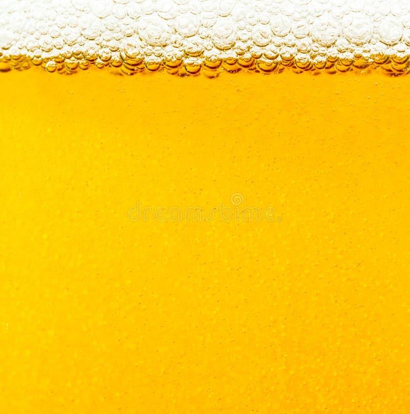 Beer bubbles. stock photos