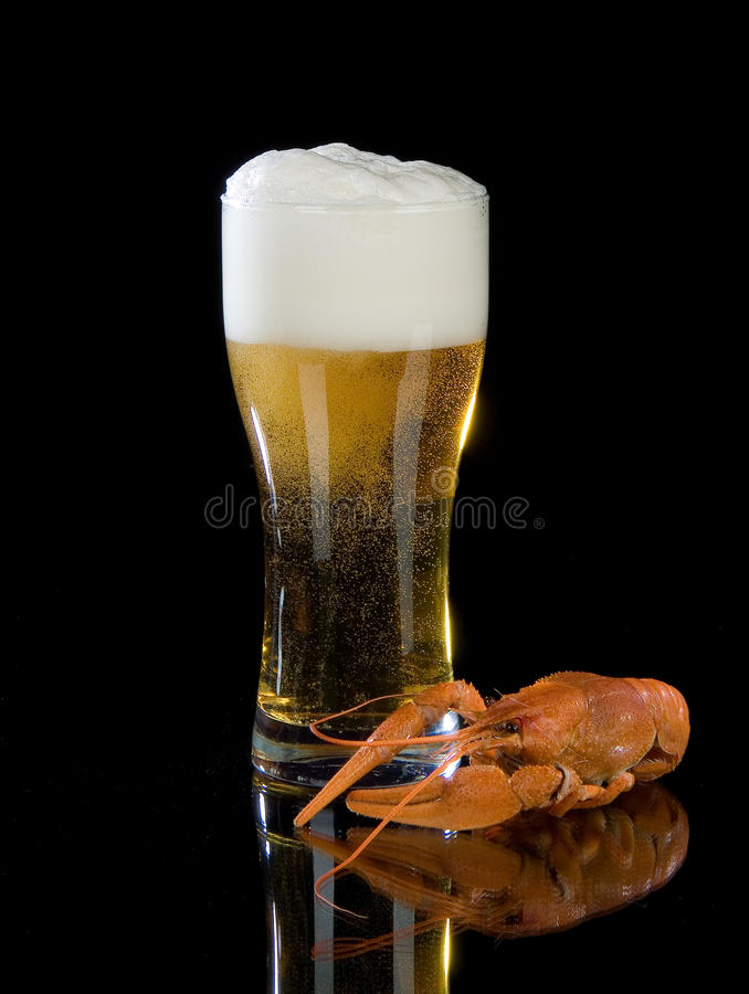 Beer And Crawfish royalty free stock photos