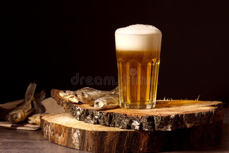 Beer and dried fish on wooden background. Russian snack . Beer and dried fish on wooden sawn log on black background. Russian snack on holidays. Time of rest royalty free stock photography