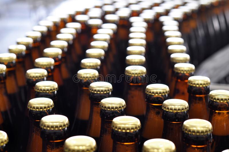 Beer filling in a brewery - conveyor belt with glass bottles royalty free stock images