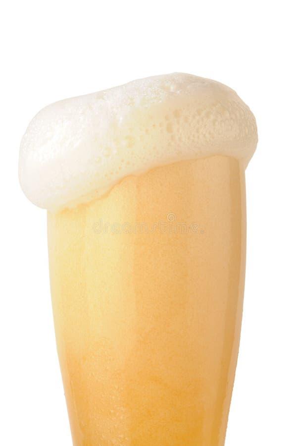Beer foam stock image