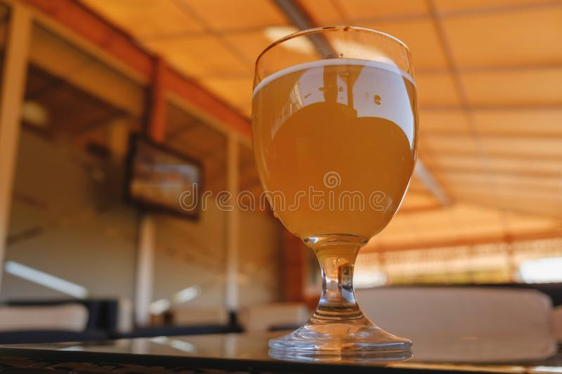 Beer glass on the bar counter. Cold drink lager beverage stock photography