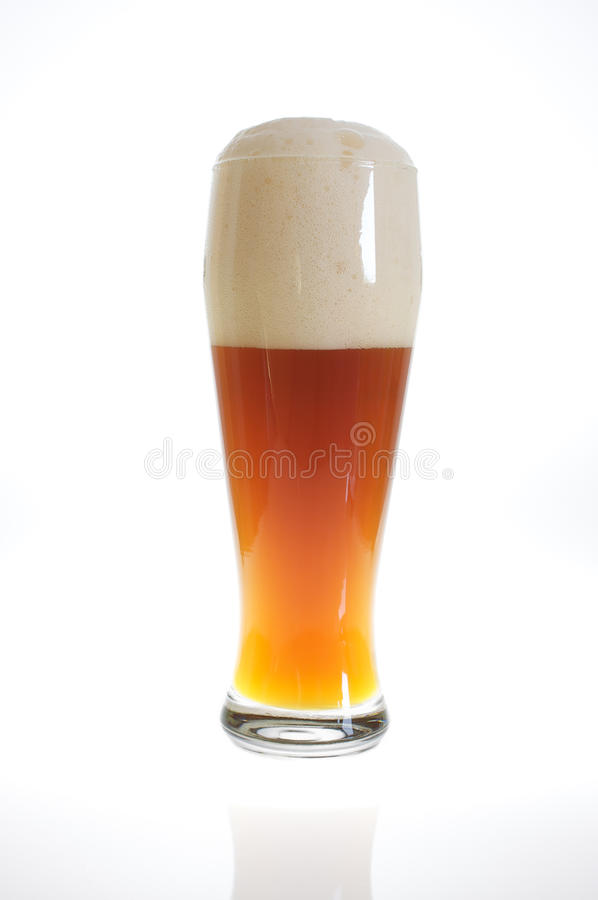 Beer glass with beer in backlight. Beer glass with froth in backlight royalty free stock photography