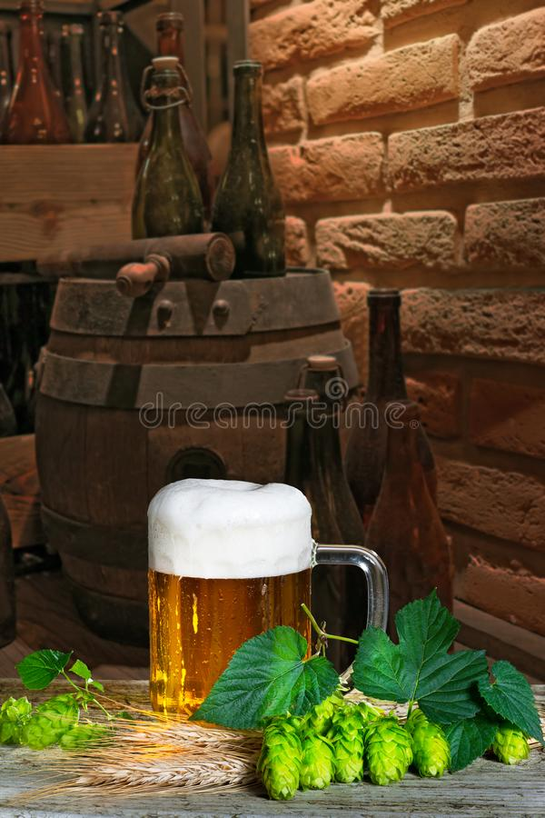 Beer glass. With hops and barley in the brewery royalty free stock photos