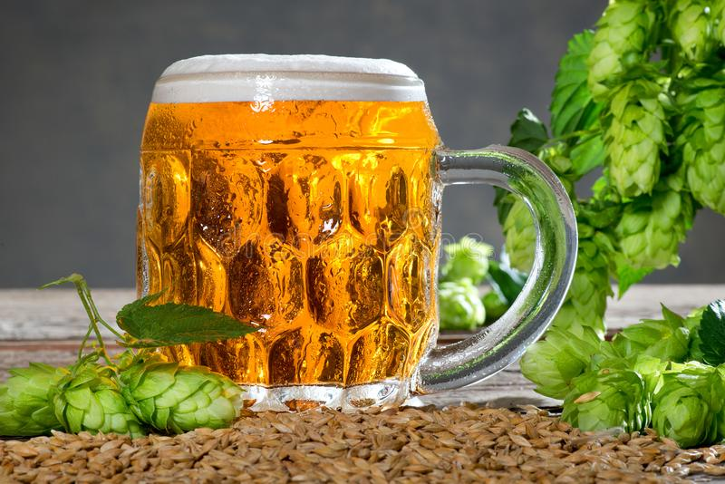 Beer glass. And raw material for beer production stock photos