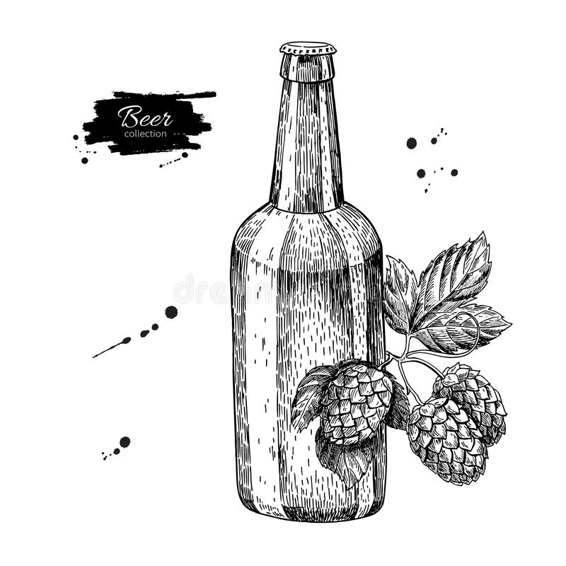 Beer glass bottle with hop. Sketch illustration. Hand drawn royalty free illustration