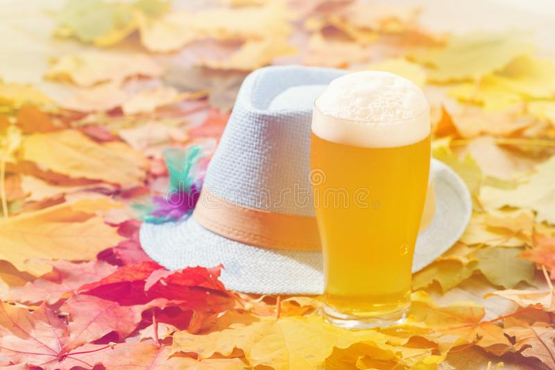 Beer glass pint octoberfest picnic on natural background with hat and autumn leaves. Beer glass pint octoberfest picnic on natural background with hat and autumn royalty free stock image