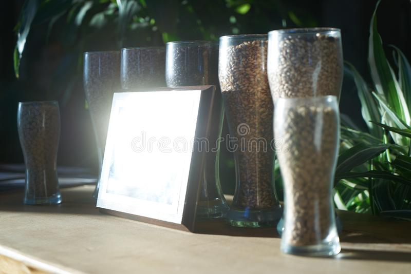 Beer glasses filled with different malts and hops, close-up. Brewery interior and equipment. Oktoberfest beer glasses with wheat and hops royalty free stock images
