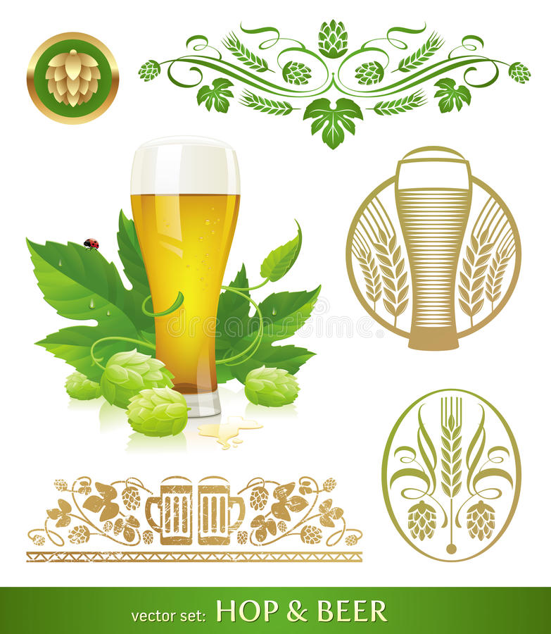 Download Beer, hop and brewing stock vector. Image of sign, hops - 23459618