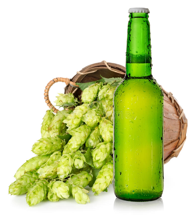 Download Beer and hops in basket stock photo. Image of ingredient - 28042656