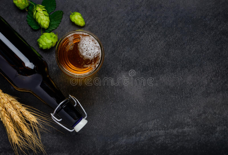 Beer with Hops and Wheat and Copy Space royalty free stock photos