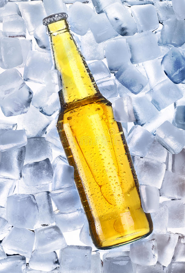 Beer and ice around. Fresh cold and tasty beer royalty free stock images