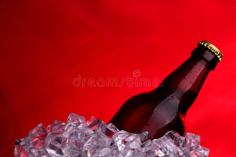 Beer in ice cubes. On the red textile background stock images