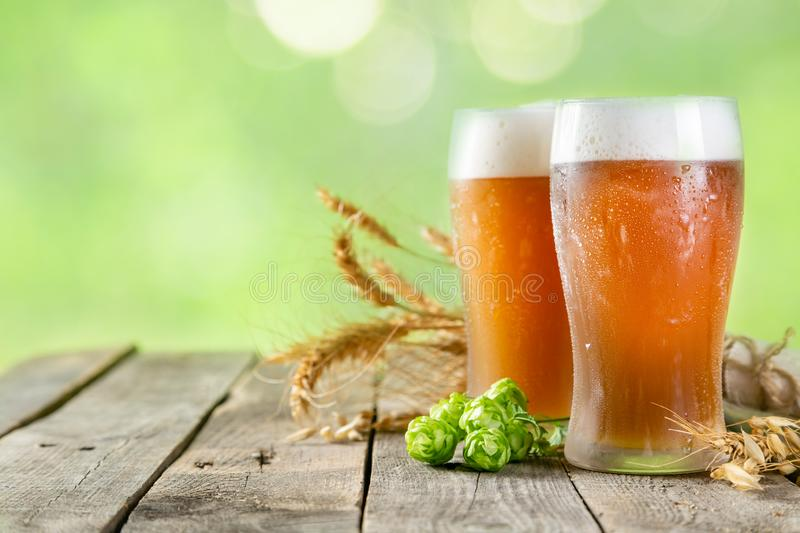 Beer and ingredients hops, wheat, barley on wood background stock photography