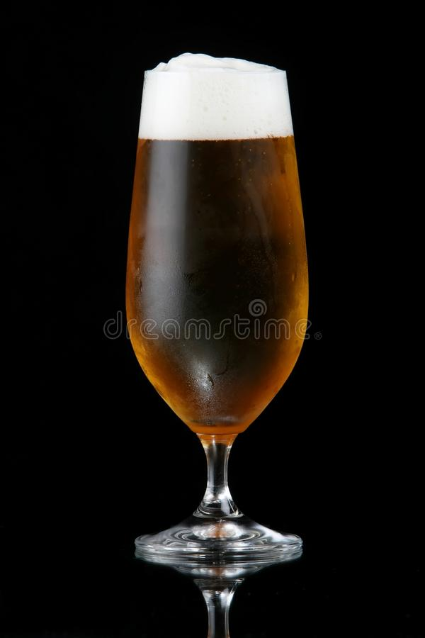 Beer or Lager in Glass royalty free stock image