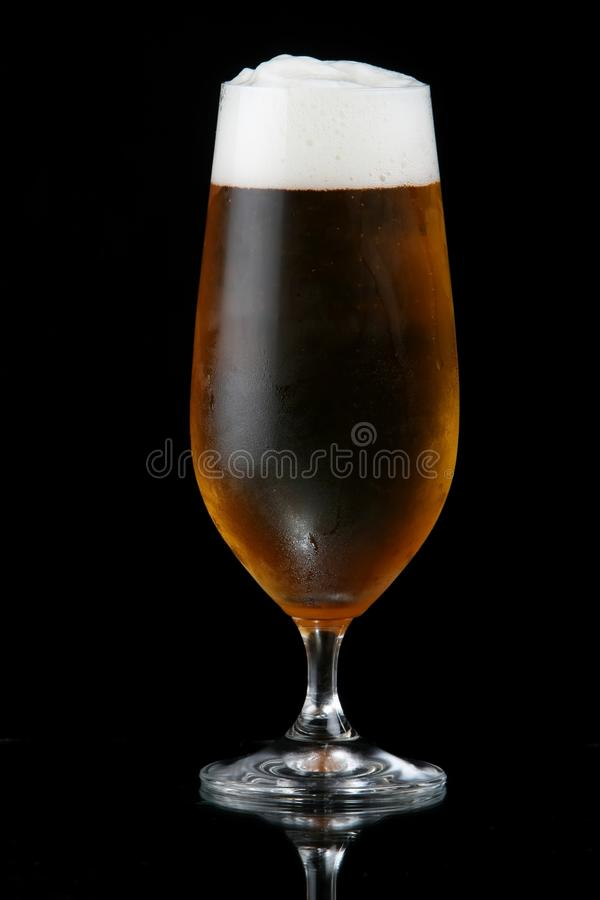 Download Beer or Lager in Glass stock image. Image of lager, drink - 14573297