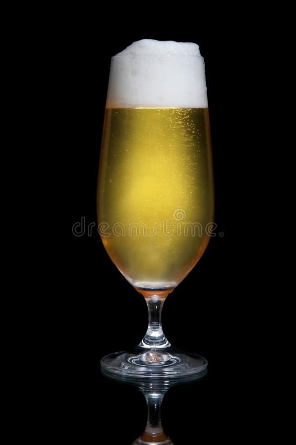 Download Beer or Lager in Glass stock photo. Image of head, celebration - 14573444
