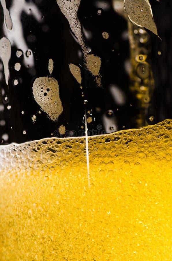 Download Beer In Macro Stock Image - Image: 23490751