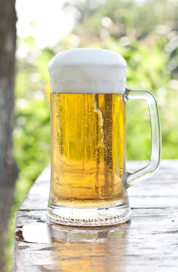 Download Beer mug stock photo. Image of fresh, glass, amber, background - 24434504
