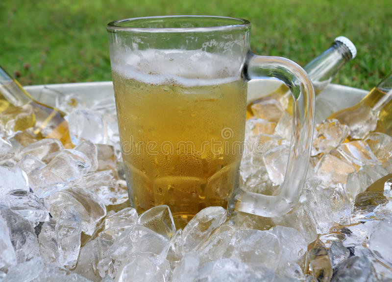Beer mug centered in ice bucket with beer bottles stock photography