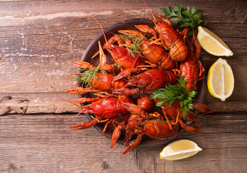 Beer party. Still life with crayfish crawfish on old wooden rust. Ic background. Top view. Overhead. Copy space royalty free stock images