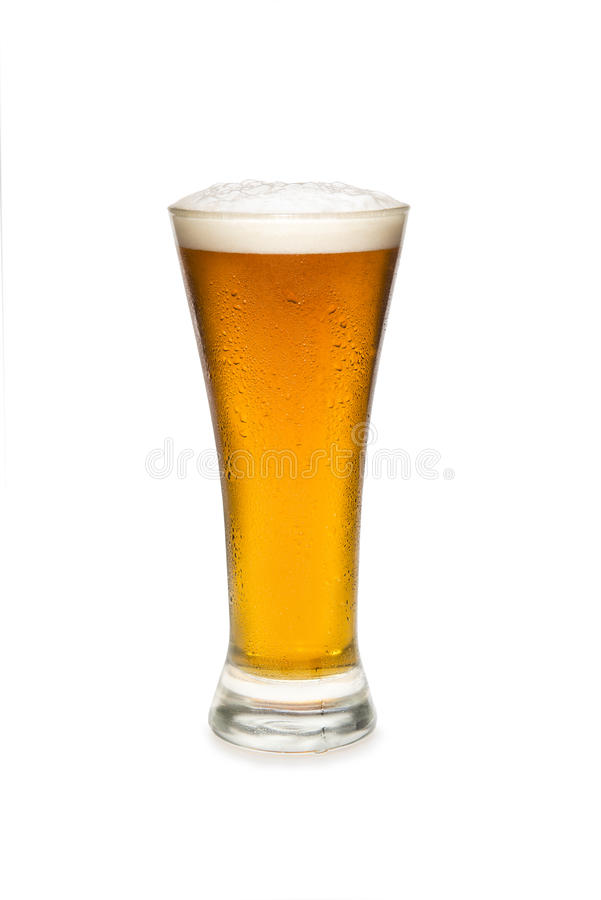 Beer In a Pilsner Glass royalty free stock images