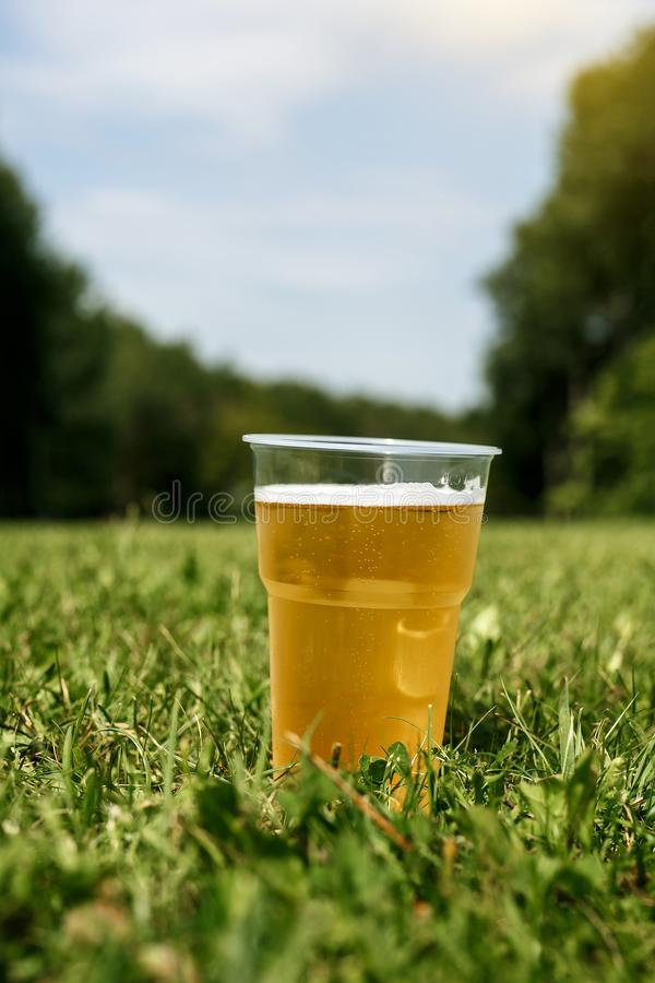 The beer is poured into a plastic glass. Placed on the green grass in the early morning stock photo