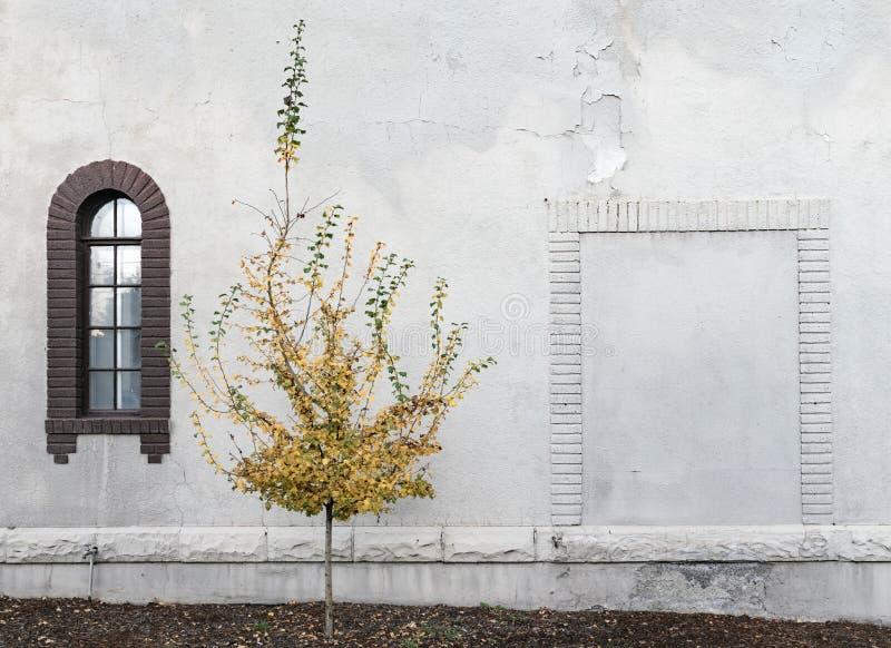 Beerdigungsinstitut-Wand lizenzfreies stockbild