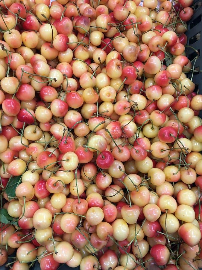Beere der reifen weißen süßen Kirsche stockfotos