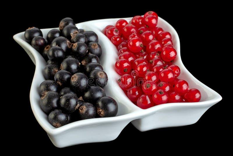 Beeren aus schwarzem und rotem Johannisbeeren dicht lizenzfreie stockbilder