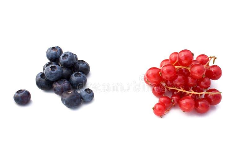 Beeren: Blaubeeren und rote Johannisbeere lizenzfreie stockfotografie