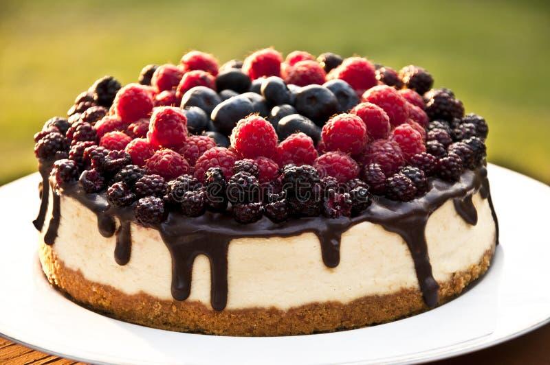 Beeren-Kuchen stockfoto