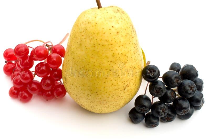Beeren und Frucht. stockfotos