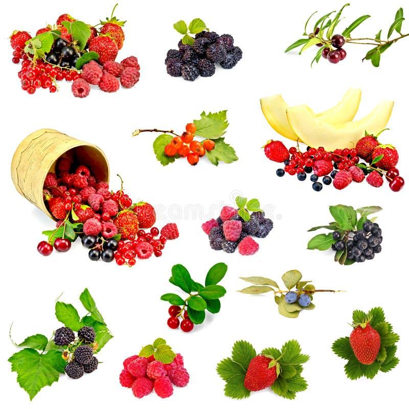 Beeren und Melonensatz stockbilder