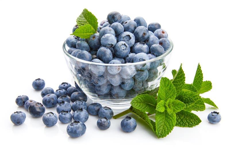 Beerenblaubeere mit Blattminze gro?em fruchtigem Beschneidungspfad eingeschlossen lizenzfreie stockfotografie